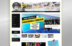 Site internet Floorball Paris